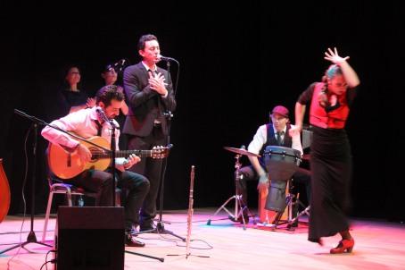 23-11-2013-CULTURA.-AYTO.-ALMERÍA.-Concierto-Milonga-2